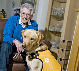 dementia assistance dog